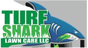 Turf Shark Lawn in Kansas City Logo
